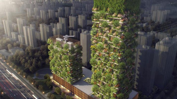 В Китае создадут «Вертикальный лес» для выработки кислорода